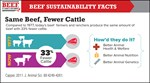 samebeef fewer cattle